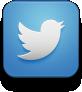 liz wood associate twitter